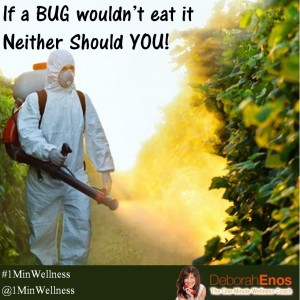 If-a-bug-wouldnt-eat-it-neither-should-you-Deborah-Enos-300x300
